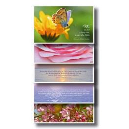 Postkartenset - 5 Karten